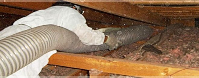 Attic Clean Up: New Jersey Residents May Need Professional Help!