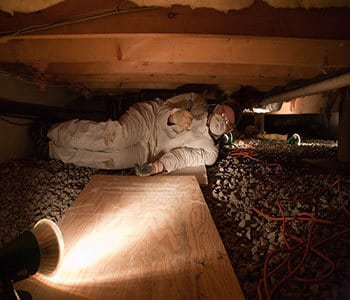 Crawl Space Cleaning: When To Call A Professional