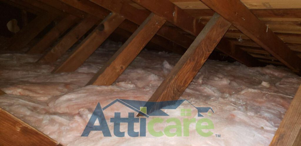 Attic Rodent Proofing and Cleanup Services in Mountain View