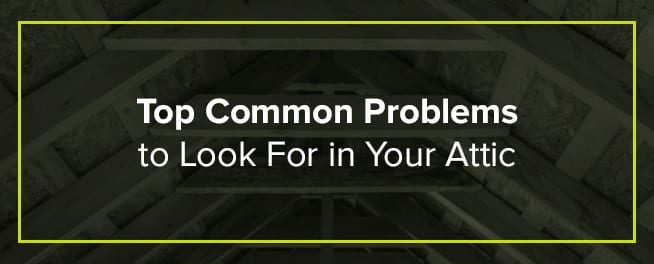 Top Common Problems to Look For in Your Attic