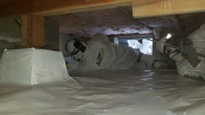 7 Signs It's Time to Clean Your Crawl Space