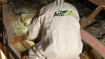 Why You Should Not Install or Remove Attic Insulation Yourself