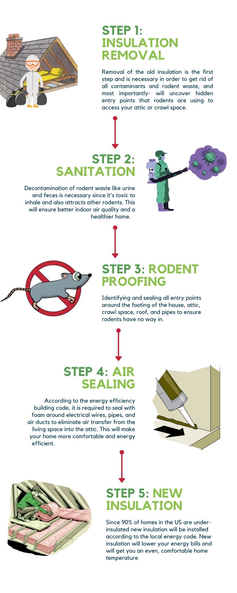 5 steps to get rid of rodents